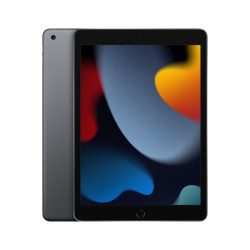 iPad 10.2 Wifi 256GB Gris