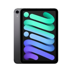 iPad Mini Wifi Celular 256GB Gris